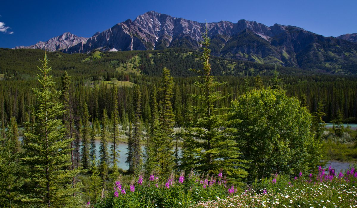 3 Banff National Park Day Hikes
